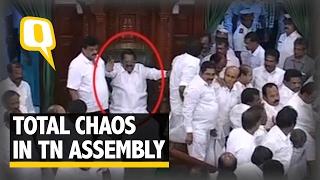 The Quint: Tamil Nadu Assembly Chaos: DMK MLAs Manhandle Speaker