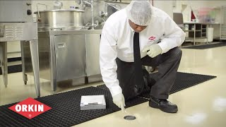 Interior & Exterior Inspections | Orkin Commercial Pest Control