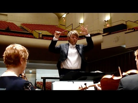 What is the role of the Conductor?
