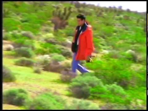 張學友 - 一千個傷心的理由 MV 1995