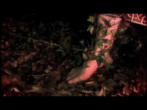 Cate Le Bon - Hollow Trees House Hounds -  official video HD