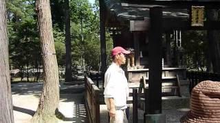 恭仁京東北道歴史街道ウォーク.wmv【信楽編】