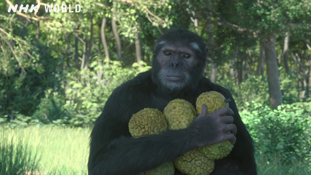 Download 1. Prehistoric Family Life - OUT OF THE CRADLE [人類誕生CG] / NHK Documentary