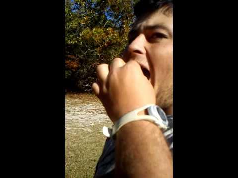 John sylvester eats a lizard for two dollars!