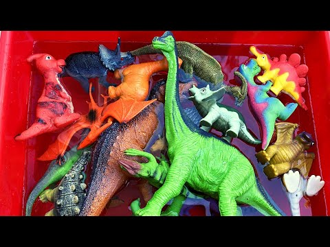 Learn Dinosaur Name! TYRANNOSAURUS TRICERATOPS Twins English Korean.공룡 이름을 배우십시오! 쌍둥이 영어 한국어