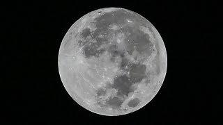 Direkte: Se supermåneformørkelsen
