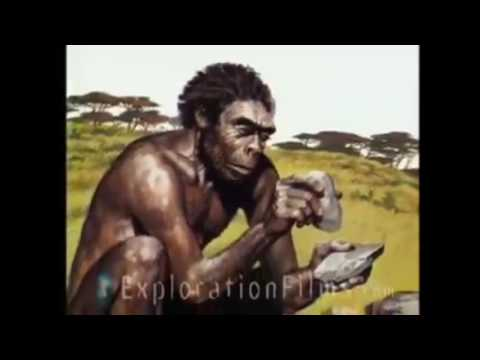 Evolution Defying Creatures