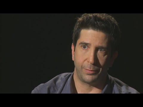 David Schwimmer: In Confidence