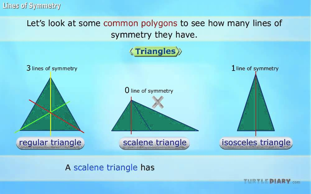 Lines Of Symmetry Youtube