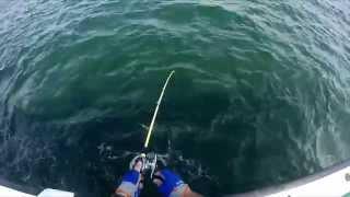 Gopro: Boat Fishing 剣崎松輪 カワハギ釣り