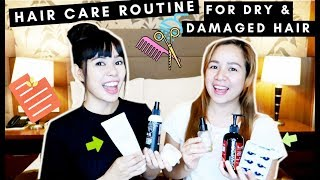 Get Your Hair Healthy Again Challenge-Hair Care Routine For Dry & Damaged Hair-Beautyklove