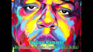 JayGurr Hammer - Biggie Smalls - Hypnotize (Trip-Hop Dance ReMix)
