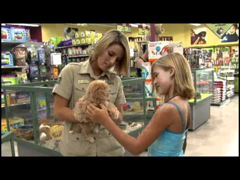 Petland Puppies - From A Caring Start To A Loving Heart