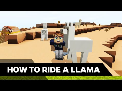 how-to-ride-a-llama-in-minecraft---malone-post-tutorials