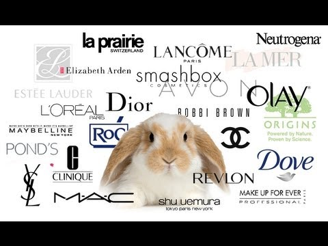an analysis of animals cosmetics Research the key strategic objectives include: a) ending cosmetics animal  testing worldwide, via the multi-  (ecvam) to carry out a new data analysis to  objec.