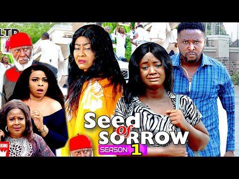 Download SEED OF SORROW SEASON 1- (New Hit Movie) - Onny Micheal 2020 Latest Nigerian Nollywood Movie Full HD