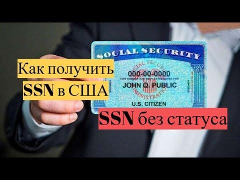 Как получить ssn