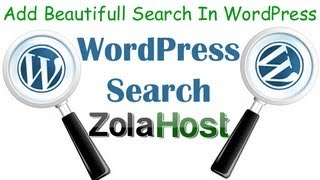 Add A Beautiful Search Into WordPress
