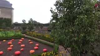 France: Loire - Villandry. Франция: Долина Луары - Вилландри(My video. 9'2012. Автобусный тур