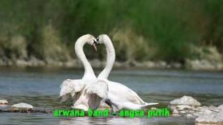 Download Arwana - Angsa Putih
