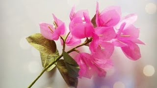 Bougainvillea From Tissue Paper - Craft Tutorial