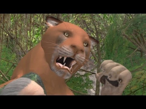 Bear saves California man from mountain lion attack - YouTube
