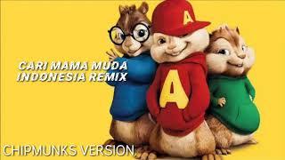 Download lagu CARI MAMA MUDA || Terbaru Tiktok Remix || Chipmunks Version
