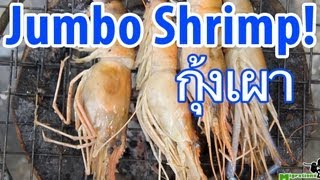 Thai Roasted JUMBO Shrimp (กุ้งเผา)