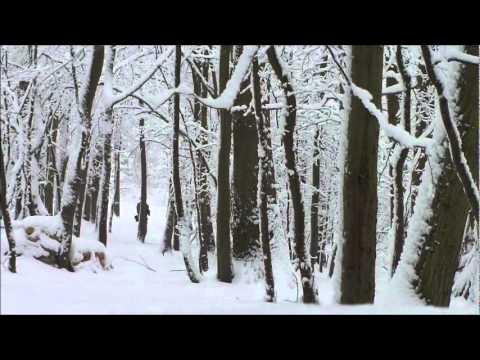 Arctic Warfare (Snow Airsoft)