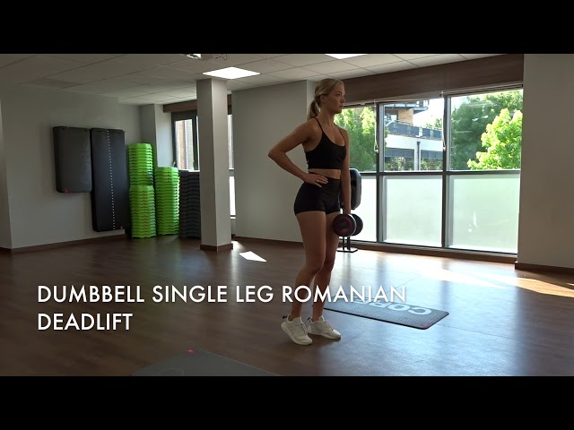 Dumbbell Single Leg Romanian Deadlift