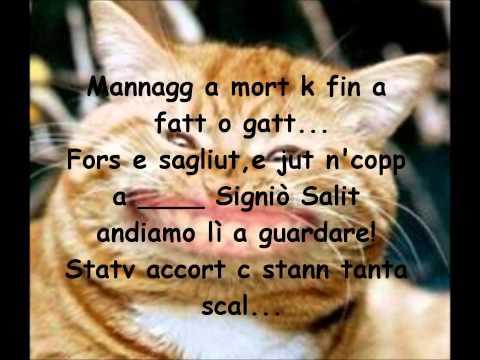 Gianni Vezzosi - Il Gatto con testo