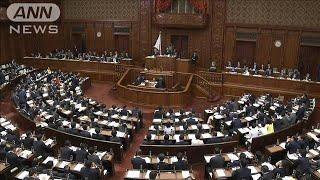 「結婚しなくていい」国会のヤジに蓮舫議員が猛反発(20/01/23)