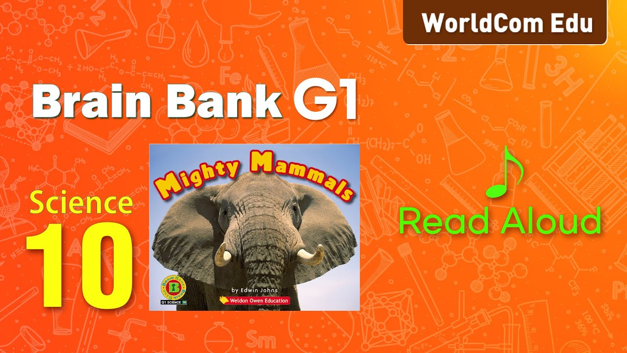 브레인뱅크 G1  Science  I 10. Mighty Mammals  I  Read Aloud