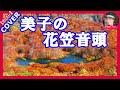 美子の花笠音頭・歌手:竹川美子(日本クラウン) Cover by Sammy