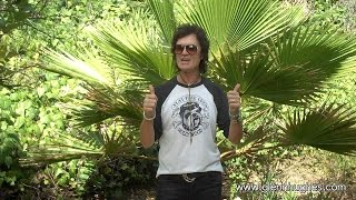 Message from Glenn Hughes - June 2015