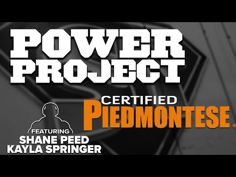 Mark Bell's Power Project EP. 296 - Piedmontese Owner Shane Peed And Kayla Springer