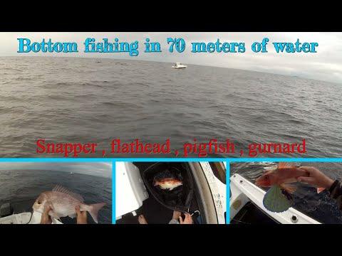Reef Fishing - Snapper , Flathead , Pigfish , Gurnard