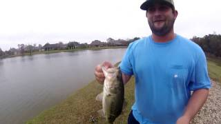Thomas Perret & Grant Robicheaux   Neighborhood Pond Fishing Ep. 02