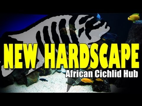 New Hardscape - #1 Tank Updates Thursday's 04/10/12  African Cichlid Hub