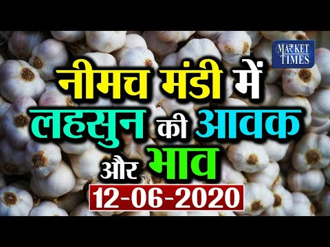 सेब का भाव | Today's Apple Market updates Shimla Himachal India in September 2019 | Apple Rate Live from YouTube · Duration:  3 minutes 9 seconds