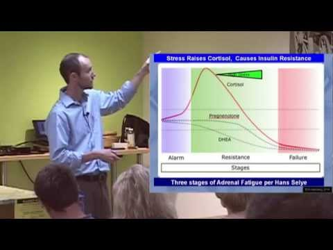 Adrenal Fatigue - How to Beat and Treat the Effects of Stress.  Presented by Dr. Andrew Rostenberg