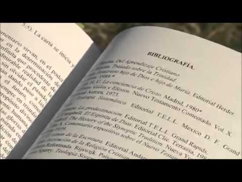 lbg.comentario-exegÉtico-al-texto-griego-del-nuevo-testamento