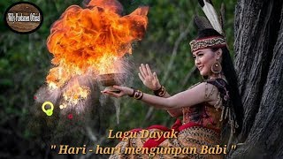 "Download lagu Lagu Dayak "" hari hari mengumpan babi"" official music 2019"