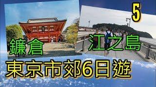 [旅行VLOG] 東京6日遊! - 一日帶你玩盡東京近郊!!!