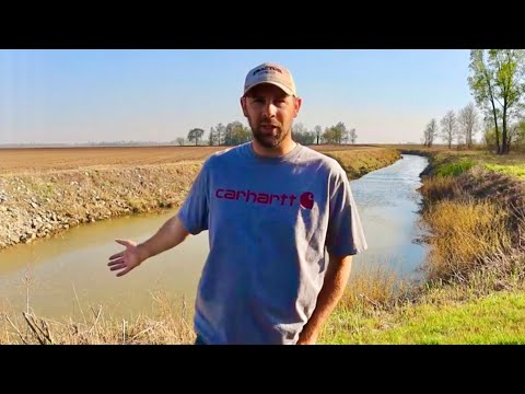 Farm Land Ditch Fishing - What's In This Random Place?
