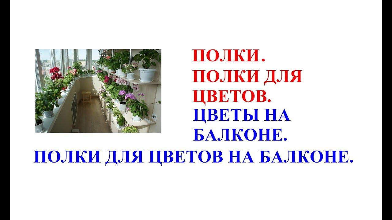 Полки. Полки для цветов. Цветы на балконе. Полки для ...