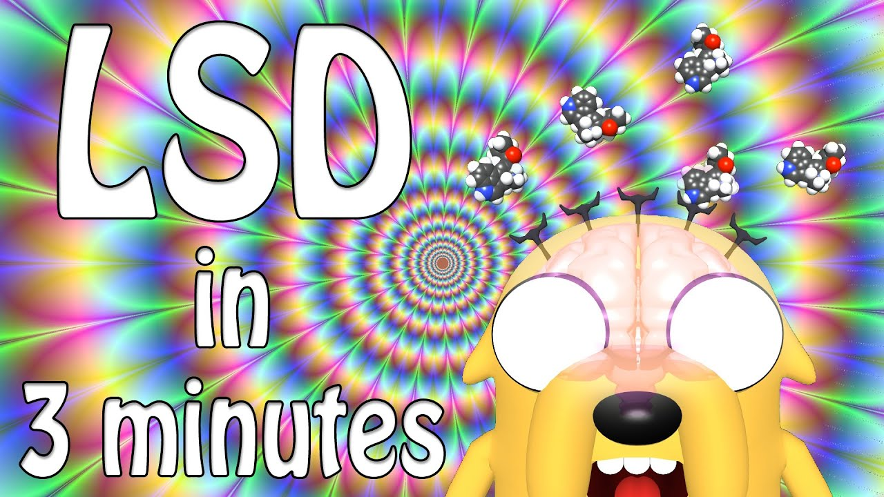 the psychedelic effects of d lysergic acid diethylamide 25 lsd D-lysergic acid diethylamide a semisynthetic psychedelic first synthesized in 1938 by swiss chemist albert hofmann, later used in psychiatric research and mind-control projects by the cia (mkultra) lsd gained popularity in the 60s with the counterculture, and was quickly criminalized in 1966 in the us it is a solid.