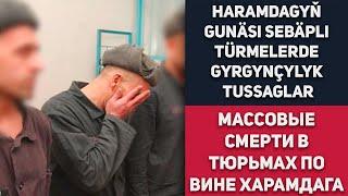 Turkmenistan Haramdagyň Gunäsi Sebäpli Türmelerde Gyrgynçylyk Tussaglar. Halas Etmegi Soroýarlar