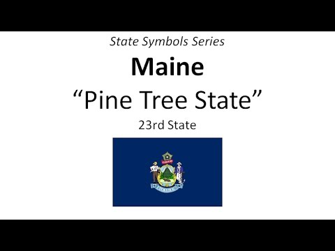 State Symbols Series - Maine