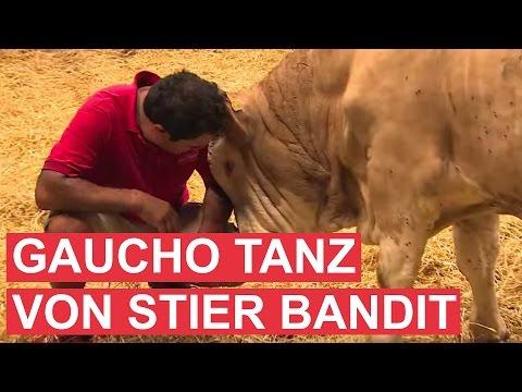 Gaucho-Tanz von Stier Bandit als Dank!